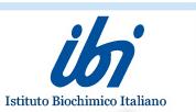 Logo della marca I.b.i.giovanni lorenzini spa