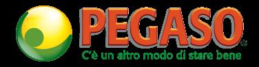 Logo della marca Pegaso srl